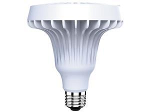 BYD Lighting DL-P38A151 75 Watt Equivalent LED Light Bulb