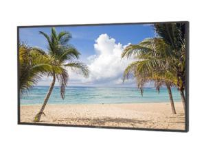 "NEC Display Solutions P552 Black 55"" Large Format Monitor"