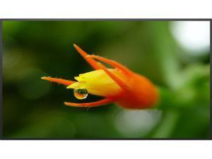 "Planar SL4351 43"" Simplicity™ Series  LCD Digital Signage Display - 997-7953-00"