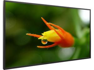 "Planar 997-7929-00 EP6514K-T 65"" EP Series 4K Ultra HD Commercial-Grade LCD Touch Displays"