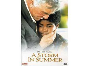 Storm In Summer