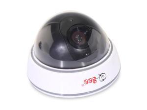 Q-See QSM30D Dome Decoy Camera - Non-Operational