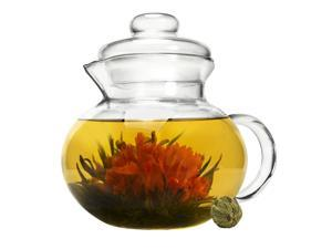 Primula PTA3940 Handblown Glass Tea Pot with Loose Tea Infuser