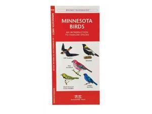 Minnesota Birds Pocket Naturalist Guide Kavanagh, James/ Leung, Raymond (Illustrator)