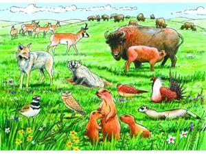 Outset Media 58808 Life in the Prairie - 35 piece tray puzzle