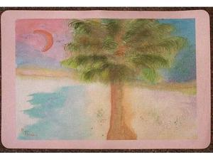 Betsy Drake DM235 Palmetto Moon Doormat