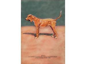 Buyenlarge 04733-xP2030 Remus 20x30 poster