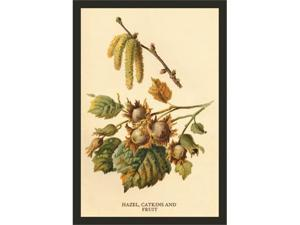Buyenlarge 17612-1P2030 Hazel, Catkins and Fruit 20x30 poster