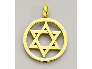 Rite Lite JSN-YG042 Star of David Pendant - Stainless Steel with Gold Plate