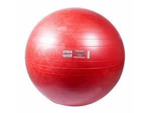 Power Systems 80113 65cm VersaBall Pro Stability Ball - Calypso Berry