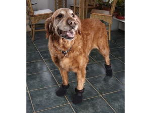 Ultra Paws 301TP X-Small Fleece TrAction Dog Boot - X-Small