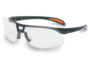 Sperian Protection Americas Clear Lens Prot?g? Safety Eyewear  RWS-51021