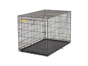 Midwest ACE-424 Life Stage A.C.E. Crate 24 in. x 18 in. x 19 in.