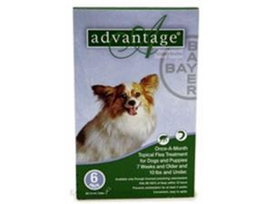 Bayer ADVANTAGE6-GREEN Advantage 6 Pack Dog 0-10 Lbs. - Green