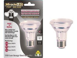 Miracle LED 603005 5-Watt LED Fat Beam Security Bulb  Wide Angle Flood Light