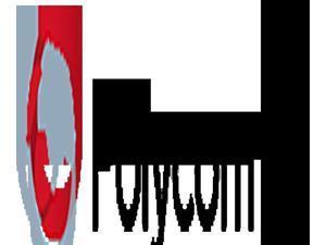 Polycom  Inc. PY-2200-46175-001 Polycom  Inc. PY-2200-46175-001 5 Pack Power Supply Vvx 300s And 400s