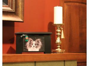 Dynamic Accents 42184 Ebony Pet Urn-Memory Box 125Cubic Inches