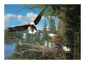 Outset Media Games OM51737 Nesting Eagles 1000 piece Puzzle