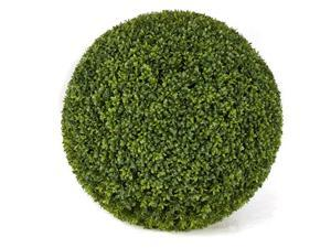 Autograph Foliages A-144324 24 in. Boxwood Ball, Green