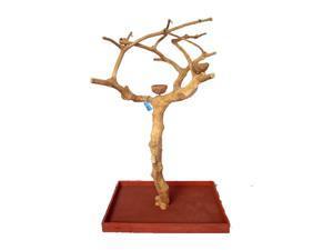 "A&E Cage Pet Birds Small Java Wood Tree Box- 40""x32""x61"""