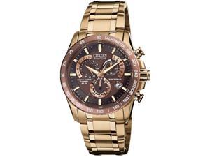 Citizen Eco-Drive Perpetual Atomic Clock Synchronization Mens Watch AT4106-52X