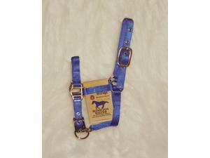 Hamilton Halter Company 3DAM AVBL Adjustable Miniature Horse Halter