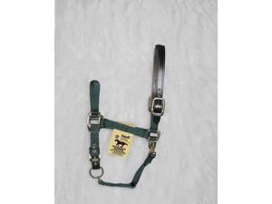 Hamilton Halter 1DALSS SMDG Adjustable Halter With Leather Headpole