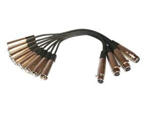 Seismic Audio - Female XLR to Two Male XLR Patch Cables 1 Foot - 4 Pack