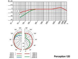 AKG Perception 120 Studio Mic Cardioid Condenser Microphone NEW