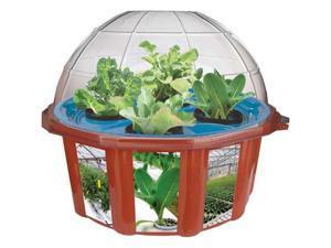 Hydro-Dome Plant Kit