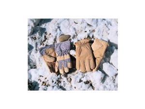 Leather Gloves, Insulated, Pigskin, L, PR
