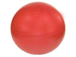 J Fit Professional Exercise Ball