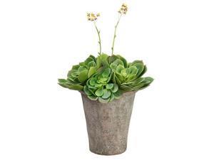 "22"" Artificial Spring Flowering Succulent Echeveria in Decorative Clay Pot"