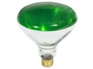 Westinghouse Green Indoor/Outdoor Flood Light Lamp 100 Watt