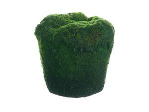 "3.5"" Decorative Green Moss Spring Soil Planter"