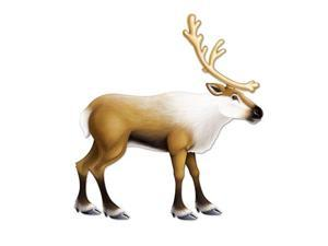 Club Pack of 12 Tan and White Jointed Reindeer Christmas Decoration 37""