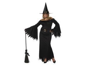 Adult Women Plus Elegant Witch Costume