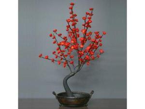 "Light Garden 00042 - 30"" Red Bonsai Electric Lighted Tree with Bowl (128 White Lights)"