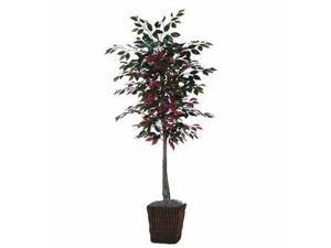 Vickerman 36418 - 6' Capensia Tree in Square Willow Contai (TEC0360-0414) Capensia Home Office Tree