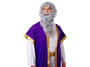 Wig and Beard Set: Biblical Long Grey
