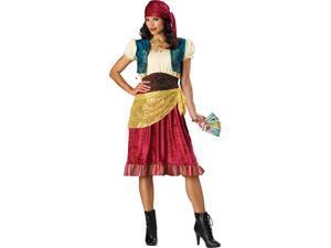 Fortune Gypsy Women's Costume