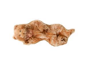 Infant Snuggle Bear Costume
