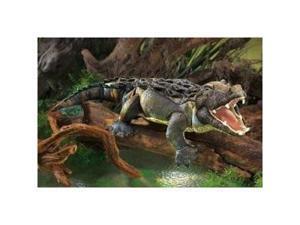 Folkmanis American Alligator Puppet