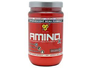 Amino X Fruit Punch - 30 Servings (15.3 oz / 435 Grams) by BSN