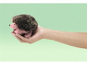 """Folkmanis Puppet Mini Hedgehog 4"""""""