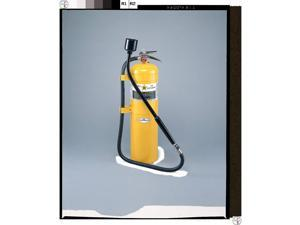 AMEREX B570 Fire Extinguisher, Dry Chemical, D