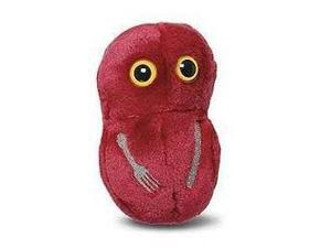 Giant Microbes Flesh Eating (Streptococcus pyogenes)