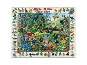 Birds of the Backyard 1000 Piece Jigsaw Puzzle by White Mountain
