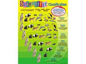 CHART SCIENTIFIC CLASSIFICATION
