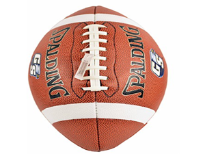Spalding Georgia Southern Leather Football